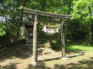 猫神社 1.jpg